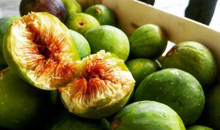 Fichi e Fichi d'india: i frutti più gustosi dell'estate salentina!